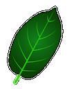 greenvein-01